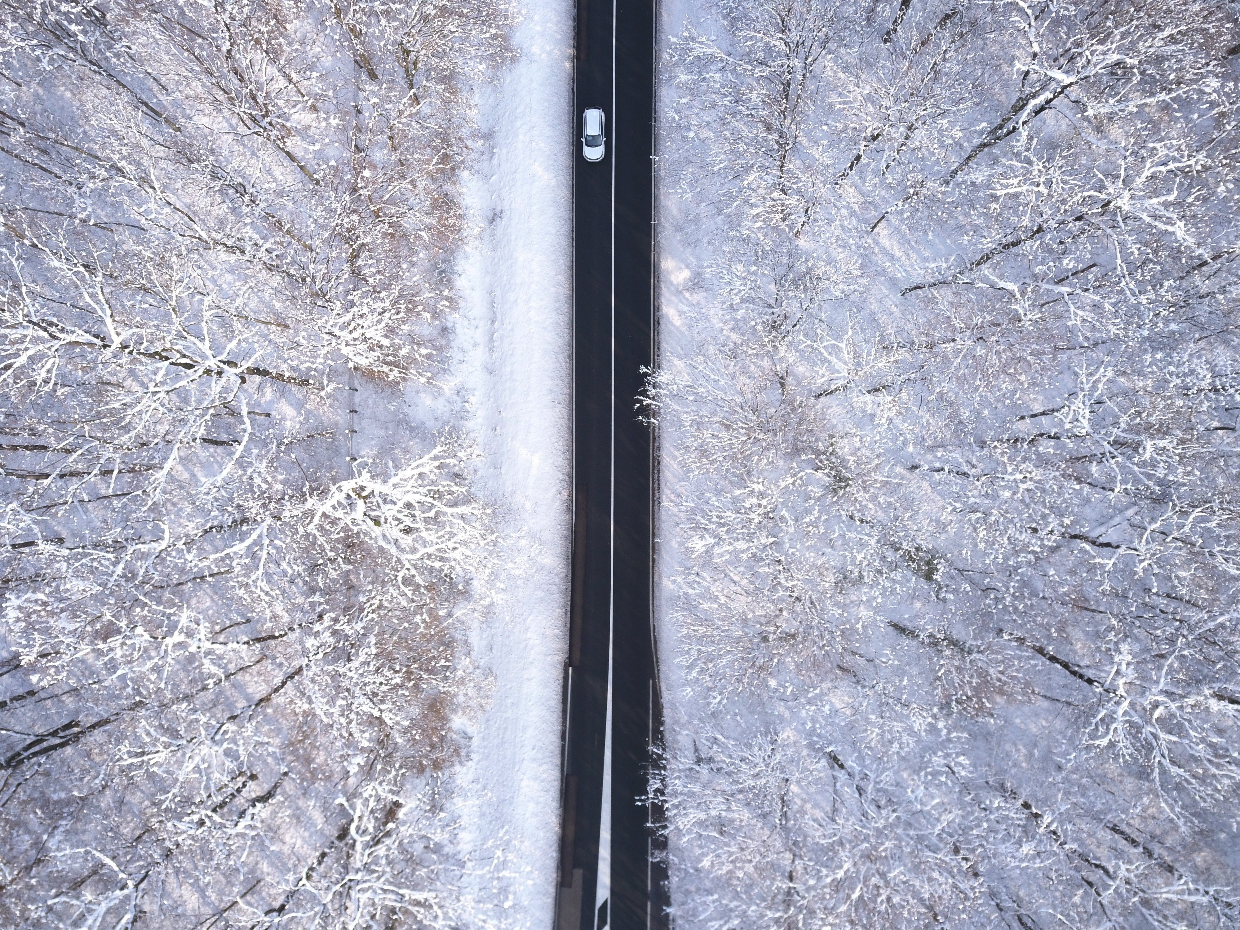 bird-s-eye-view-car-cold-1702068.jpg
